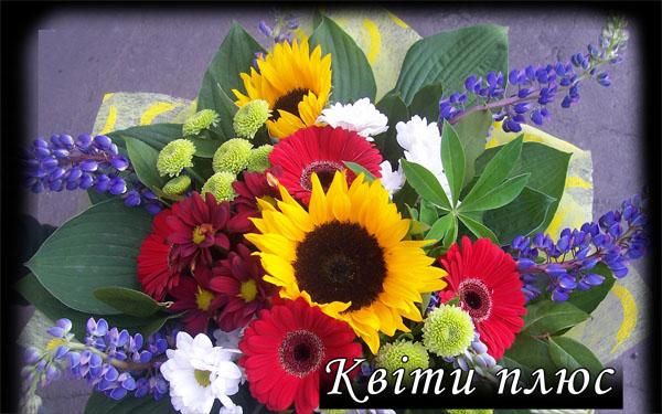 Квіти плюс  оновлення